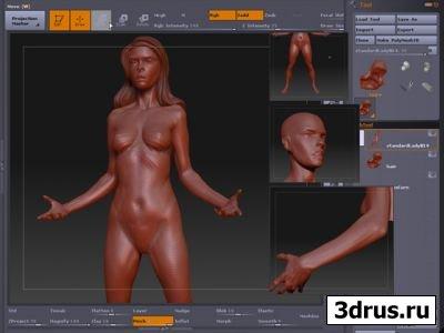 Gnomonology: Zbrush 3.01 Human Anatomy Female