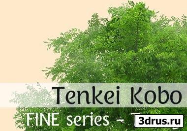 FINE™ Textures Series by Tenkei Kobo - Tree 3
