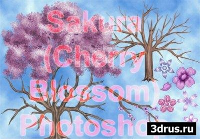 Sakura Photoshop Brushes