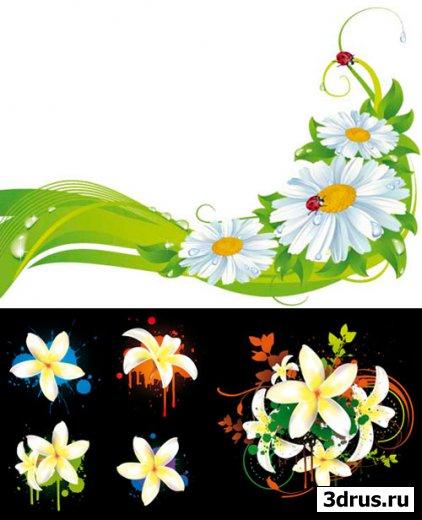 floral motives -  векторный клипарт