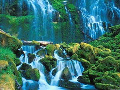 SaversPlanet Waterfalls Screensaver 1.2 Скринсейвер: Водопады мира