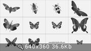 Сборник кистей для фотошопа (880 шт/2008)