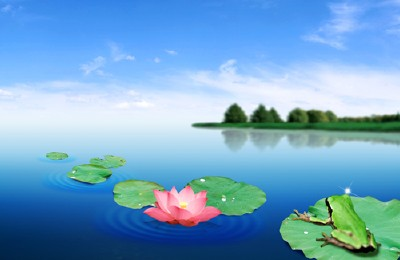 Красивый PSD исходник - Цветок лотоса