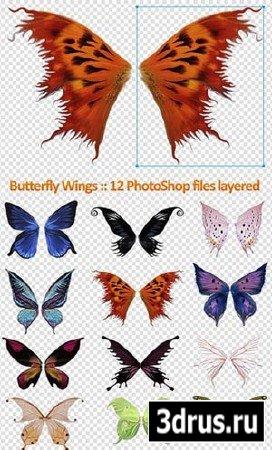 Клипарт - крылья бабочек