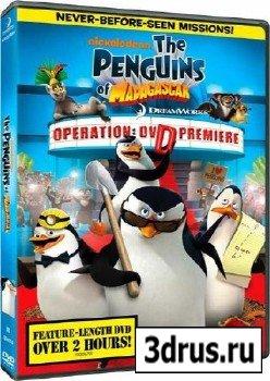 Пингвины Мадагаскара: Операция ДВД / The Penguins Of Madagascar: Operation DVD (2010) DVDRip 700/140