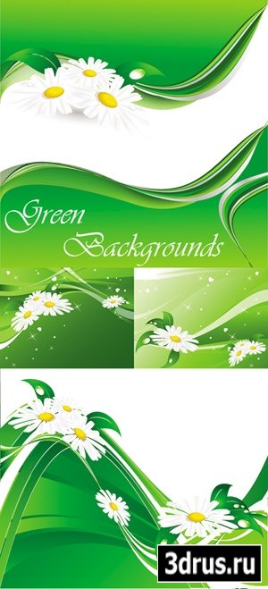 Green Backgrounds with Camomiles