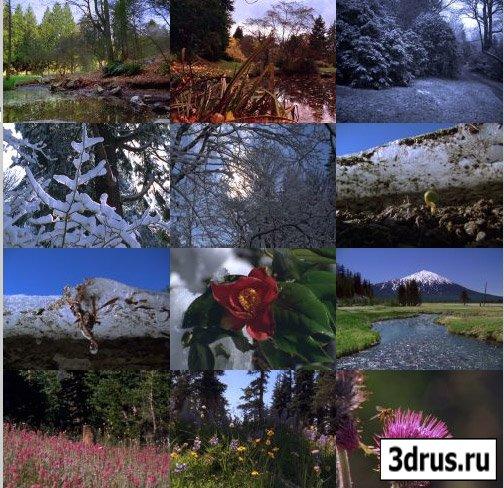 Artbeats: Changing Seasons