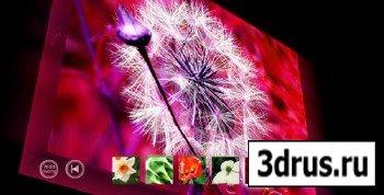 ActiveDen - 3D Ambient XML Gallery