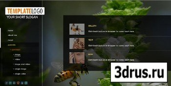 ActiveDen - Flash SiteTemplate XML v10 (Incl PHP)