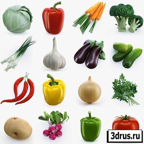 3D Модели овощей