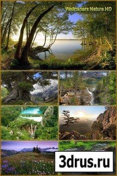 Обои - Горы, лес и деревья
