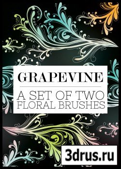 ABR Brushes - Grapevine Floral