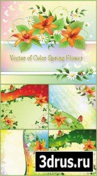 Фоны - Цветок весны