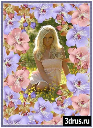 Рамочка для фотографий - Красота и нежность цветов