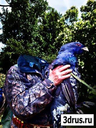Мужской шаблон - охотник и птица