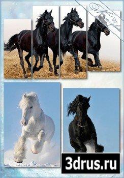 Исходник psd полиптихи - Породистые лошади